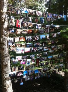 Another nature inspired Graduation Decor DIY! Find your favorite photos memories and string them across trees!