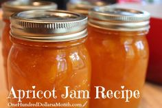 How to Make Easy Apricot Jam Recipe . Apricot season is here! Canning jam is an EASY way to preserve the fresh taste of summer to enjoy when it's not so lovely Canning Tips, Home Canning, Canning Recipes, Easy Canning, Apricot Jam Recipes, Apricot Preserves Recipe, Apricot Ideas, Canned Food Storage, Jam And Jelly