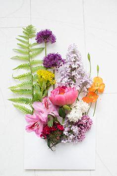 Flowers By Sonja Klein