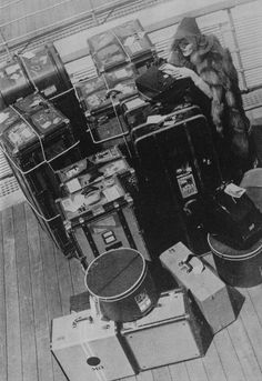 Marlene Dietrich… and her luggage.