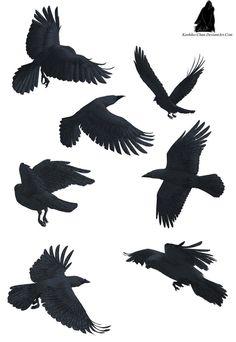 Crow tattoos