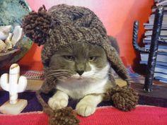 Gato con Tejidos Oveja Negra