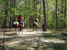 Horseback Riding at Rock Creek Park