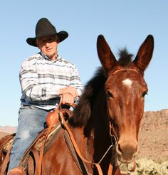 STEVE EDWARDS - Steve offers clinics on understanding and training mules, donkeys and their owners. He focuses on partnership with the mule, teaching how to drive wagons, pack mules and trail ride.