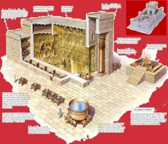 Solomon Builds The Temple