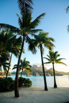Bora Bora Travel Guide and Video