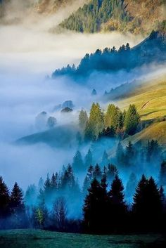 """""""Fog and Mist""""  ~  The Smoky Mountains"""