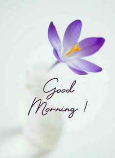 Good Morning Letter, Sweet Good Morning Images, Good Morning Beautiful Flowers, Good Morning Nature, Good Morning Image Quotes, Good Morning Cards, Good Morning Beautiful Quotes, Good Morning My Love, Good Morning Photos