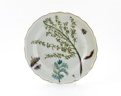 """A Chelsea botanical plate, painted with a spray of Artemisia Annua (Sweet Wormwood) amidst scattered insects & butterflies, a caterpillar casting his shadow as he crawls across the rim, red anchor mark, c.1755. Thebotanical painting on this plate is probably taken from Philip Miller's 'Figures of the """"Most Beautiful, Useful & Uncommon Plants..."""" (1755). Miller was the chief gardener at the Chelsea Physic Garden, where inspiration for many Chelsea botanical pieces came from."""