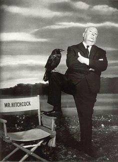 BROTHERTEDD.COM Alfred Hitchcock, Hitchcock Film, Best Director, Film Director, Die Vorahnung, Classic Hollywood, Old Hollywood, Hollywood Cinema, The Birds Hitchcock