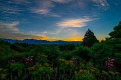 Sunrise Over Queen Elizabeth Park Queen Elizabeth Park, Dynamic Range, Mountain Range, Art Sketchbook, Vancouver, Lightroom, Sunrise, Coast, Explore