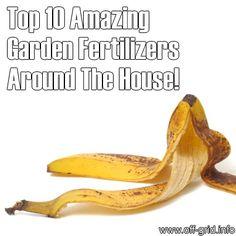 Top 10 Amazing Garden Fertilizers Around The House