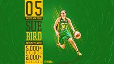 WNBA Social Media Artwork - New Years Countdown on Behance