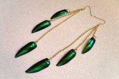 Real Beetle Wing Earrings by addieladawn