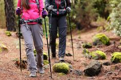 Sections Of Trekking Poles That One Should Know About : EcoVoice – Environment News Australia Best Hiking Pants, Best Hiking Shoes, Hiking Staff, Walking Poles, Outdoor Woman, Walk On, Cross Training, Back Pain, Trekking