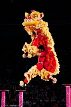 Taiwan - Kaohsiung International Lion Dance Festival and Competition 2012高雄戲獅甲