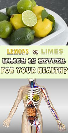 Lemons and limes are different in aspect and taste, but on the inside their characteristics are the same. In other words, they are both rich in vitamin C and B9, nourishing deeply your body. Also, they both contain high levels of limonoids, a component that reduces the risk of Cancer. Let's see how similar they …