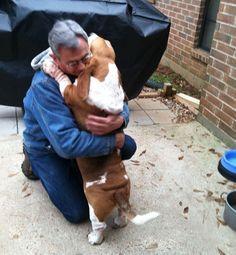 Resultado de imagen para basset hound hug