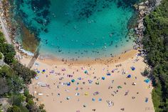 Shelly Beach, Manly, New South Wales, Australia