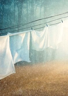 clotheslines, clothespin, cleanses, laundry rooms, summer rain