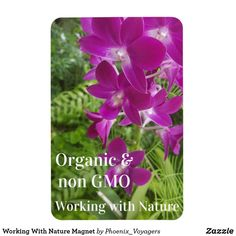 Working With Nature Magnet Create Your Own, Create Yourself, Grow Organic, Photo Magnets, Nature, Plants, Random, Naturaleza, Plant