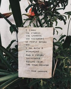 — family name ✨ // poetry at unexpected places pt. 42 by noor unnahar   // words quotes poetic artsy, tumblr hipsters aesthetics pale indie grunge green beige aesthetic, instagram creative photography ideas inspiration, writers of color pakistani artist empowerment, plants creativity //