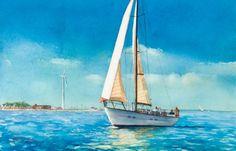 Sailing Through the Gut
