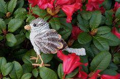 House Sparrow amigurumi pattern by MieksCreaties