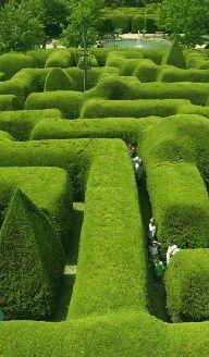 Parques y Jardines-Laberinto de Ashcombe, Australia #gardendesign #landscapearchitecture