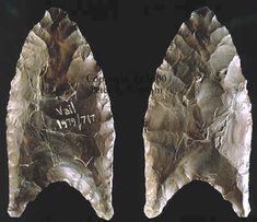 EASTERN STYLE----DEBERT-CLOVIS POINT OXFORD COUNTY, MAINE, MAINE STATE MUSEUM COLLECTION.    This small heavily resharpened fluted point was found on the Vail site in 1979.