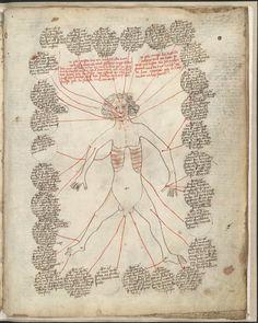 Manuscritoenciclopédico con contenido dedibujos médicos y alegóricos — Visor — Biblioteca Digital Mundial