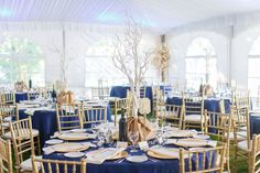 Tent Wedding , Blue and Gold with Tree Centerpieces