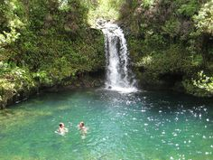 Pua'a Ka'a State Wayside in Maui Hawaii is a roadside stop where you can swim under a waterfall in the rainforest.