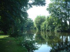 River Under Trees Pictures - Make sure to visit GardenAnswers.com and download our free plant idenfication app.