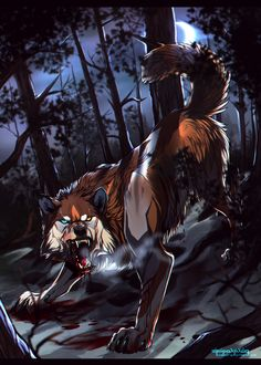Wolves / (Don't mess with her by AgentWhiteHawk.deviantart.com on @DeviantArt)