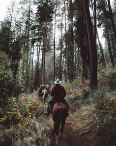 The guy in the plaid looks like Jack. The guy in the plaid looks like Jack. - Art Of Equitation Horse Love, Horse Girl, Le Far West, Horse Photography, Horse Riding, Trail Riding, Adventure Is Out There, Plein Air, Horseback Riding