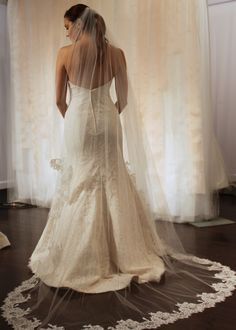 Astrid & Mercedes lace wedding dress with cathedral veil