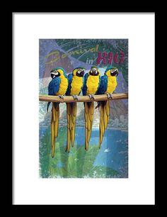 Parrot Perch, Rio Carnival, Black Wood, Hanging Wire, Traditional Art, Clear Acrylic, Art Pieces, Original Paintings, Framed Prints