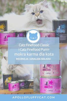 """Karmy Catz Finefood powstają zgodnie z minimalistyczną filozofią """"less is more"""", są """"cruelty free"""" i mają ogromny wybór wariantów smakowych (nawet kangura!). W tym poście poznasz moją szczegółową analizę, efekty testów i przemyślenia na temat karm dla kotów Catz Finefood Classic oraz monoproteinową Catz Finefood Purrrr. Poultry, Karma, Vogue, Classic, Blog, Free, Derby, Backyard Chickens, Blogging"""