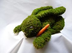 Mossed Rabbit with a carrot