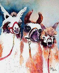 Llamas Three by Artist Ulrike 'Ricky' Martin