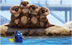 Finding Dory Sea Lion Wallpaper | finding dory sea lion wallpaper 1080p, finding dory sea lion wallpaper desktop, finding dory sea lion wallpaper hd, finding dory sea lion wallpaper iphone