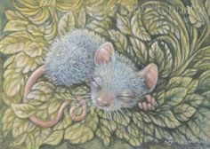 """Sleeping Blue Mouse"""