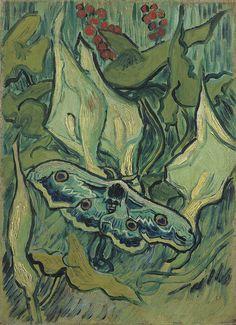Vincent van Gogh, Giant Peacock Moth, 1889. Oil on canvas, 33.5 × 24.5cm. Van Gogh Museum, Amsterdam.