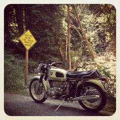 Untitled, bike, hot wheels, 2 wheels, motorcycle, MC, transportation, road sign, wood, trees, forrest, photograph, photo