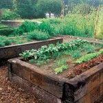 Unbelievable Raised Bed Vegetable Garden