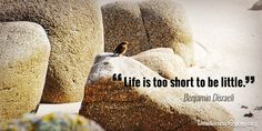 Life is too short to be little