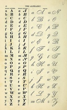Vintage calligraphy and serif font typeface alphabet chart Alphabet A, Hand Lettering Alphabet, Copperplate Calligraphy, Calligraphy Handwriting, Penmanship, How To Write Calligraphy, Cursive Handwriting Practice, Handwriting Ideas, Calligraphy Writing