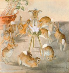 Beatrix Potter party rabbits