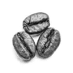 Prints for sale: coffee